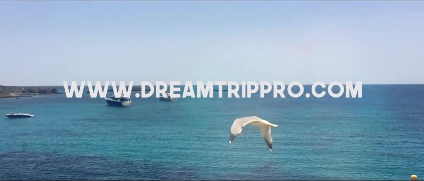 Dream Trip Pro Movie