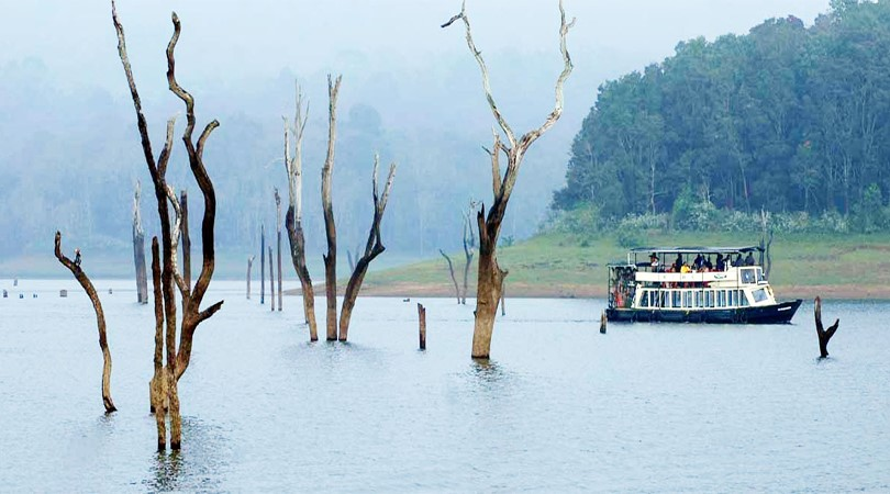 dreamtrippro-india-blog-Thekkady-kerala